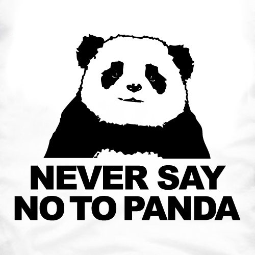 ma présentation Never-say-no-to-panda1
